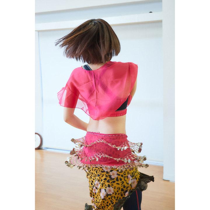 ベリーダンスの練習 ④